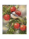 Orchard Guest Reproduction procédé giclée par William Vanderdasson