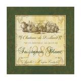 Sauvignon Blanc Giclee Print by Fiona Stokes-Gilbert