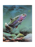 Rainbow Giclee Print by Spencer Williams