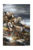 Rocky Mountain Kings Lámina giclée por Trevor V. Swanson