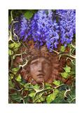 Secret Garden Giclee Print by Tina Lavoie