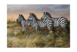 Serengeti Sunset Giclee Print by Trevor V. Swanson