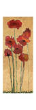 Poppies Giclee Print by Karen Williams