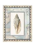 Shell Framed by Screened Map with Lighthouses Reproduction procédé giclée par Lisa Audit