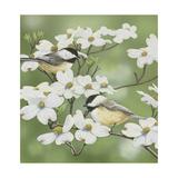Springtime and Chickadees Reproduction procédé giclée par William Vanderdasson