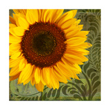 Summer Sun I Giclee Print by Tina Lavoie