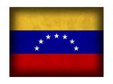 Venezuela Giclee Print by David Bowman