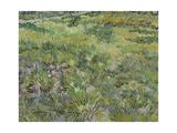 Van Gogh, Long Grass with Butterflies Giclée-tryk