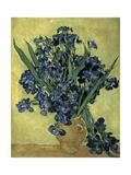 Van Gogh, Irises(1890) Gicléetryck