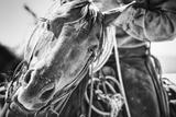 Soul of the West Reproduction photographique par Dan Ballard