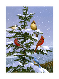 Songbirds on a Limb Reproduction procédé giclée par William Vanderdasson