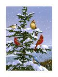 Songbirds on a Limb Lámina giclée por William Vanderdasson