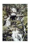 Bear Creek Crossing Lámina giclée por Jeff Tift