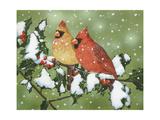 Wintery Cardinals Reproduction procédé giclée par William Vanderdasson