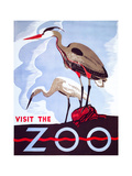Visit the Zoo Giclée-Druck