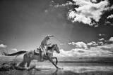 Walk on Water Fotografie-Druck von Dan Ballard