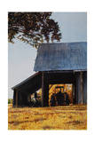 Barn W Tractor Giclee Print by Laurin McCracken