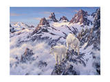 Among the Clouds - Mtn. Goat Lámina giclée por Jeff Tift