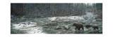 Cool Creek Lámina giclée por Jeff Tift