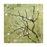 Cherry Tree I Reproduction procédé giclée par Karen Williams