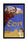 Eqypt Camel Giclée-Druck