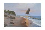 Free Bird Reproduction procédé giclée par Bruce Dumas