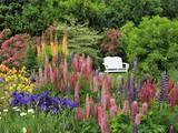 White Chair in Flower Garden Fotografie-Druck von Steve Terrill