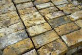 Salvaged Bricks Photographic Print by Chris Henderson