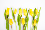 Yellow Tulips Photographic Print by Frank Lukasseck
