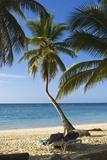 Tropical Beach, Las Terrenas, Samana Peninsula, Dominican Republic Reproduction photographique par Massimo Borchi