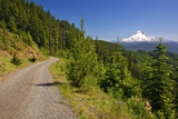 Mt. Hood from Mt. Hood National Forest. Oregon, USA Fotografisk trykk av Craig Tuttle