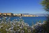View of Town from Lantivy Seaside, Ajaccio, Corsica, France Reproduction photographique par Massimo Borchi