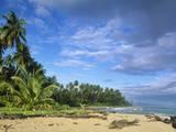 Beach in Limon, Costa Rica Impressão fotográfica por Guido Cozzi