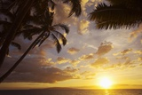 Sunset with Palm Trees in Kihei, Maui, Hawaii Reproduction photographique par Ron Dahlquist