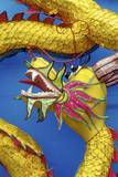 Chinese Dragon, Shenzen, China Photographic Print by Dallas and John Heaton