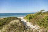 Lambert's Cove Beach Impressão fotográfica por Guido Cozzi