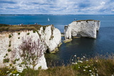 Chalk Stacks and Cliffs at Old Harry Rocks, Between Swanage and Purbeck, Dorset Reproduction photographique par Matthew Williams-Ellis