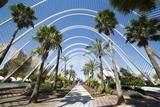 L'Umbracle (Landscaped Walk) at the City of Arts and Sciences (Ciudad De Las Artes Y Las Ciencias) Fotografisk tryk af Lee Frost