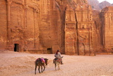 Bedouin with Donkeys in Front of the Outer Siq, Petra, Jordan, Middle East Stampa fotografica di Neil Farrin