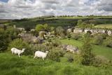 Naunton, Cotswolds, Gloucestershire, England, United Kingdom, Europe Reproduction photographique par Stuart Black