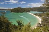 Torrent Bay, Abel Tasman National Park, Nelson Region, South Island, New Zealand, Pacific Photographic Print by Stuart Black