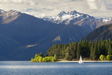 Sailing on Lake Wanaka, Wanaka, Otago, South Island, New Zealand, Pacific 写真プリント : スチュアート・ブラック