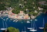 Aerial View, Portofino, Liguria, Italy, Europe Stampa fotografica di Peter Groenendijk