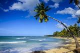 Casa Blanca Beach, Las Terrenas, Dominican Republic, West Indies, Caribbean, Central America Fotografisk trykk av Michael Runkel