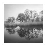 Prospect Park Lake In Morning - Brooklyn Landscape Impressão fotográfica premium por Henri Silberman