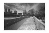 Bow Bridge Birds - Central Park, NYC in Snow Photographic Print by Henri Silberman