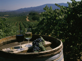 Two Glasses of Wine on Barrel at Kunde Estates Winery, Sonoma Valley, Sonoma County, California Fotografisk trykk