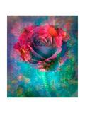 Red Rose Emotion II Poster di Alaya Gadeh