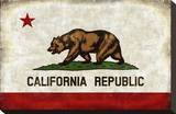 The California Republic Stretched Canvas Print by Luke Wilson