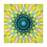 Sunny Earth Flower Mandala Art by Alaya Gadeh
